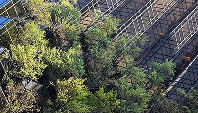 Our carbon reduction programme